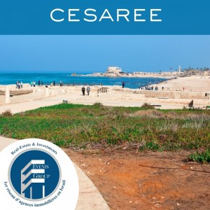 IMMOBILIER cesaree